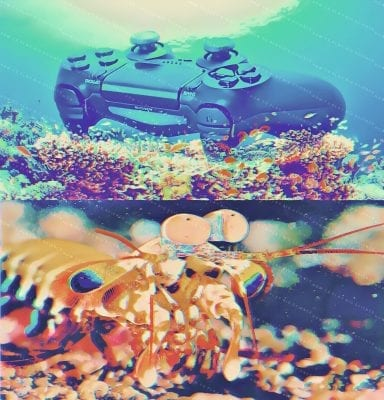 aaa-games-industry-console-shrimp